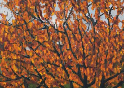29 Cherry Trees In Autumn 1 – Price 1000 €