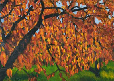 30 Cherry Trees In Autumn 2 – Price 1000 €