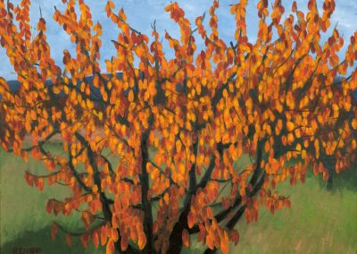 31 Cherry Trees In Autumn 3 – Price 1100 €