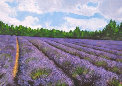 36 Lavender Field – Price 1100 €