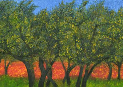 47 Olive Trees And Poppies – Price 1100 €